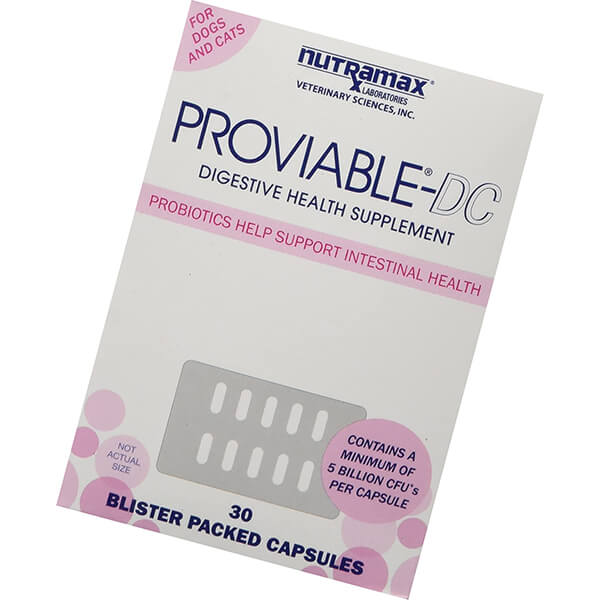 nutramax proviable health supplement for cats and dogs - best probiotic for dogs