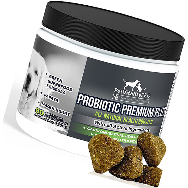 petvitalitypro probiotics for dogs with natural digestive enzymes - best probiotic for dogs