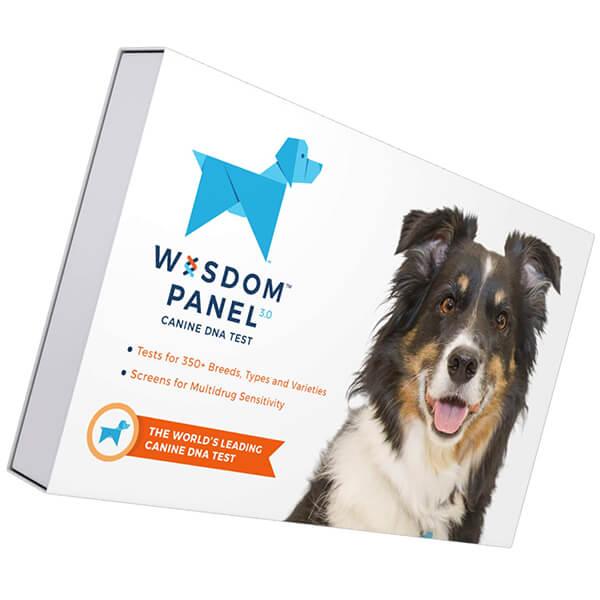 wisdom panel 3.0 canine dna test - best dog dna test