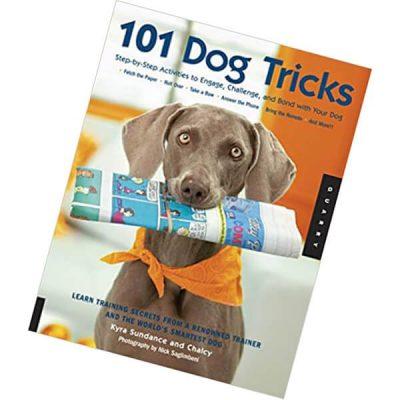 101 dog tricks - best dog training books