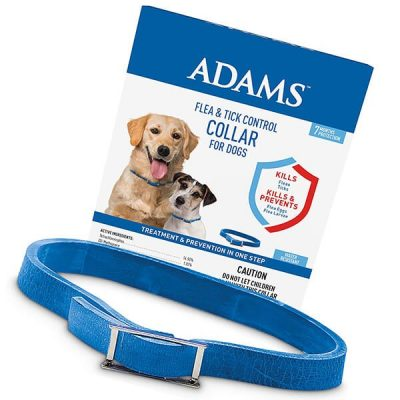 adams flea and tick collar for dogs - best flea collar for dogs