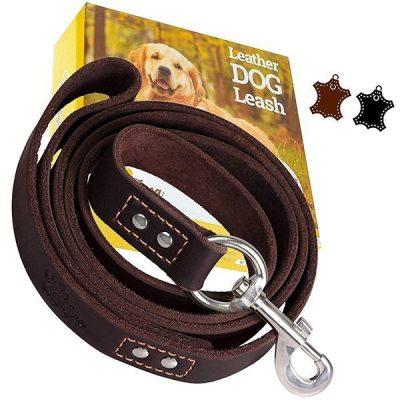 adityna heavy duty leather dog leash 6 foot - best leather dog leash