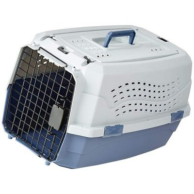 amazonbasics two-door top-load hard-sided pet travel carrier - best airline approved dog crate