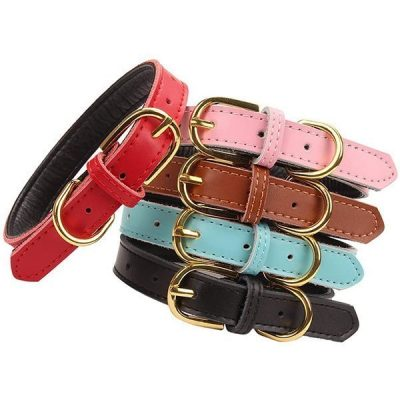 aolove basic classic padded leather pet collars - best rolled leather dog collars