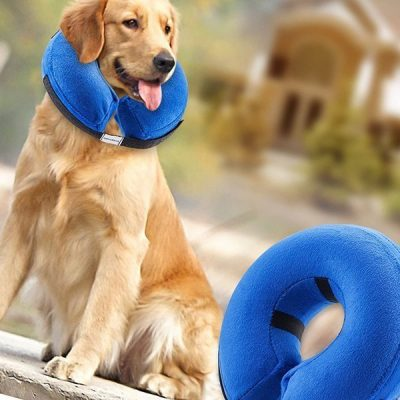 bencmate protective inflatable collar for dogs and cats - best inflatable dog collar