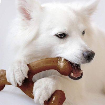 benebone real bacon durable wishbone dog chew toy - best dog toys