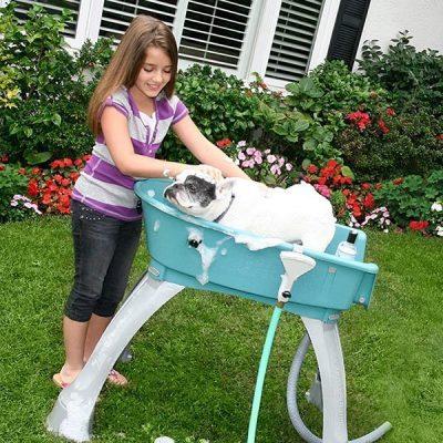 booster bath elevated pet bathing medium - best dog bath tub