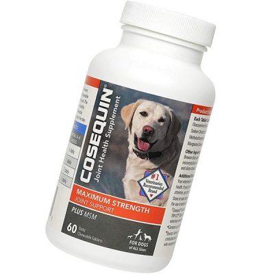 Cosequin Maximum Strength Joint Supplement Plus MSM - Best Dog Joint Supplements