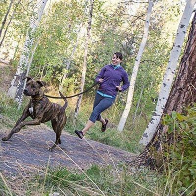 fairwin leather dog leash 6 foot - best leather dog leash
