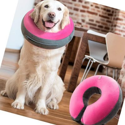 goodboy comfortable recovery e-collar for dogs and cats - best inflatable dog collar