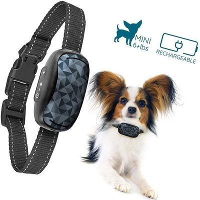 goodboy small rechargeable dog bark collar for tiny to medium dogs - best bark collar for small dogs