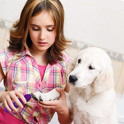 hertzko electric pet nail grinder gentle - best dog nail grinder