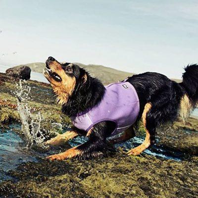hurtta cooling dog vest - best dog cooling vest