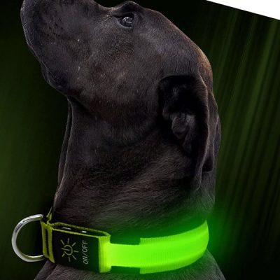 illumifun led dog collar - best led dog collar