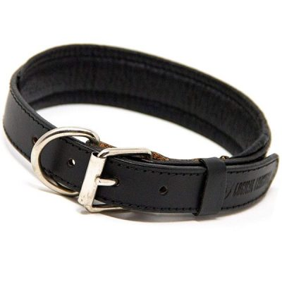 logical leather padded dog collar - best rolled leather dog collars