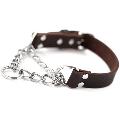 mighty paw leather training collar - best chain dog collar