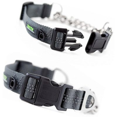 mighty paw martingale collar - best chain dog collar
