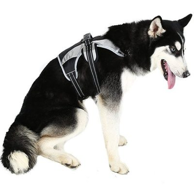 mihachi secure dog harness - best escape proof dog harness
