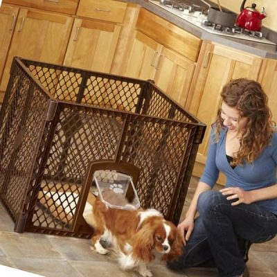 mypet north states petyard passage - best indoor dog kennels