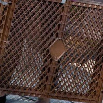 mypet north states petyard passage - best indoor dog kennels