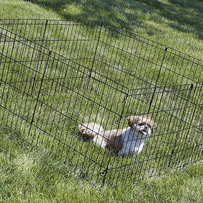 new world pet products foldable metal exercise pen & pet playpen - best portable dog fence