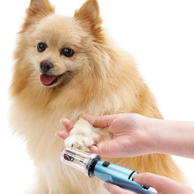 oster gentle paws less stress dog and cat nail grinder - best dog nail grinder