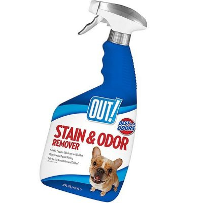 out! pet stain & odor remover - best pet odor remover