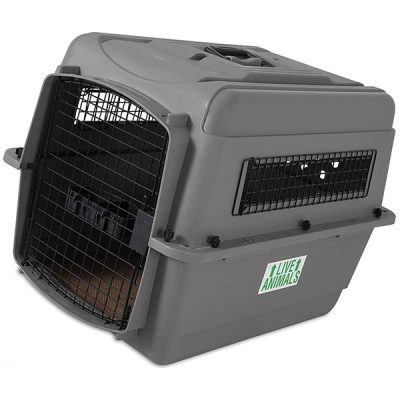 petmate sky kennel pet carrier - best airline approved dog crate