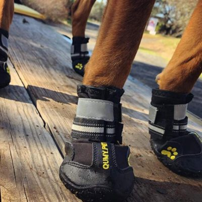 qumy dog boots waterproof shoes - best dog boots