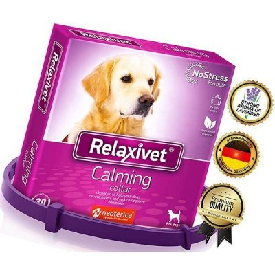 relaxivet calming collar for dogs with appeasing effect - best calming collar for dogs