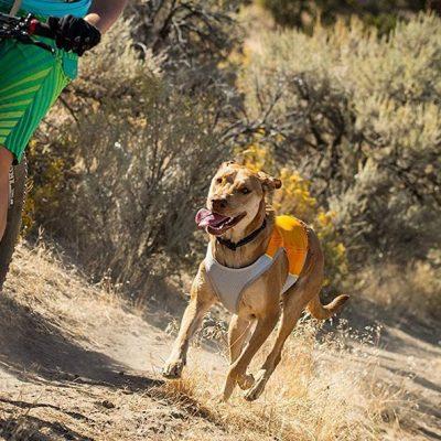 ruffwear - jet stream vest - best dog cooling vest