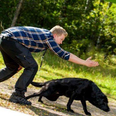 smartpet-dog-whistle-2