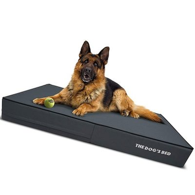 the dog's bed orthopedic dog bed - best waterproof dog beds