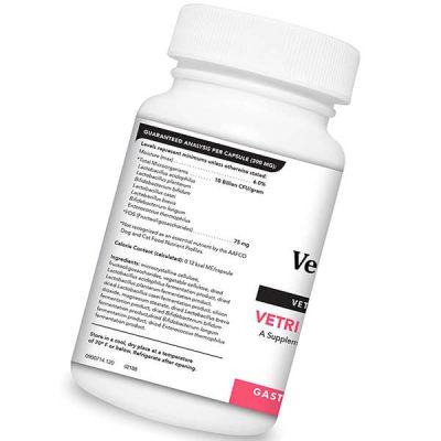 vetriscience laboratories - vetri mega probiotic - best probiotic for dogs
