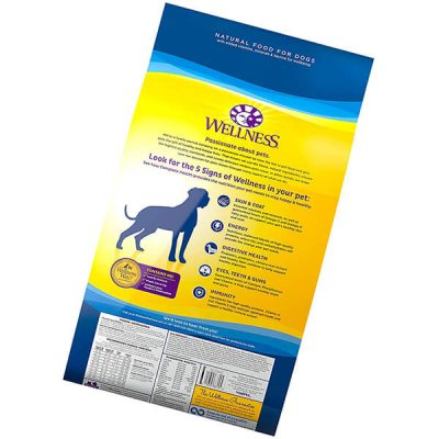 wellness complete health natural dry large breed puppy food - best large breed puppy food